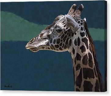 Giraffe Canvas Print by Aaron Blaise