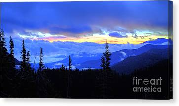 Hurricane Ridge Canvas Print by Twenty Two North Photography