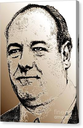James Gandolfini In 2007 Canvas Print by J McCombie