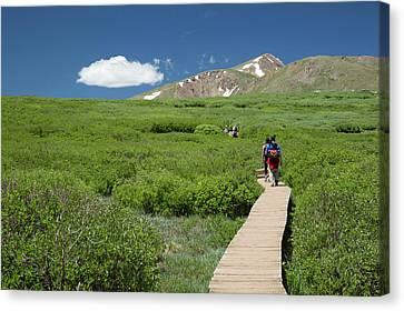 Mount Bierstadt Hiking Trail Canvas Print by Jim West