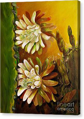 Night Blooming Cereus Canvas Print by Zina Stromberg