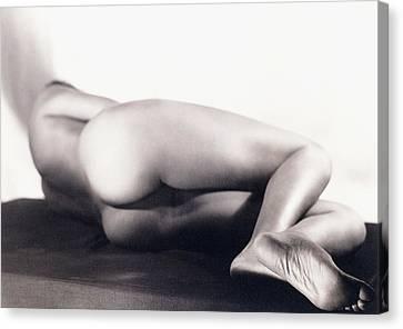 Nude Canvas Print by Sasha Stone