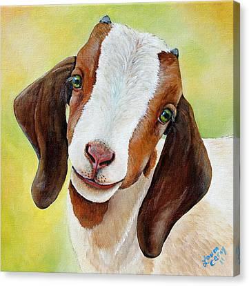 Opal Canvas Print by Laura Carey
