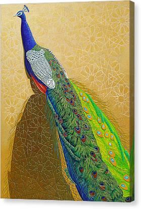 Persian Fashion Canvas Print by Vlasta Smola