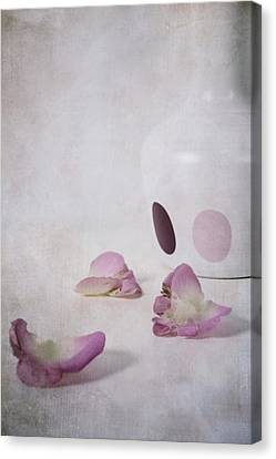 Petals Canvas Print by Joana Kruse