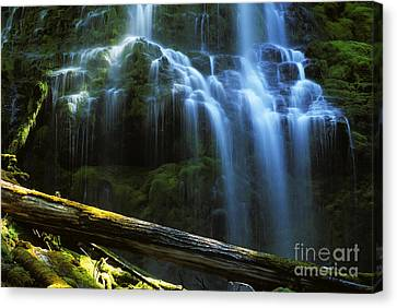 Proxy Falls Oregon Canvas Print by Bob Christopher