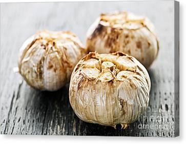 Roasted Garlic Bulbs Canvas Print by Elena Elisseeva