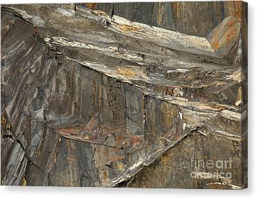 Rock  Canvas Print by Graham Foulkes