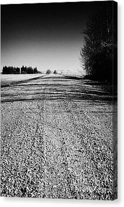 rough rural unpaved gravel road in remote Saskatchewan Canada Canvas Print by Joe Fox