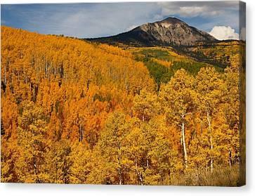 San Juan Mountains In Autumn Canvas Print by Jetson Nguyen