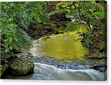 Serene Stream Canvas Print by Frozen in Time Fine Art Photography