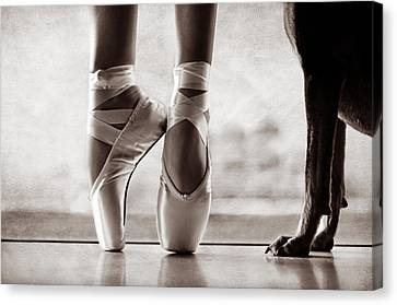 Shall We Dance Canvas Print by Laura Fasulo