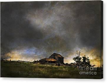 Summer Storm Canvas Print by Theresa Tahara