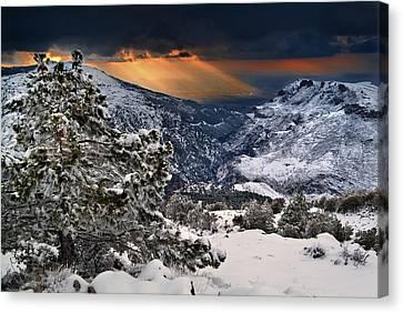 Sun Rays Canvas Print by Guido Montanes Castillo