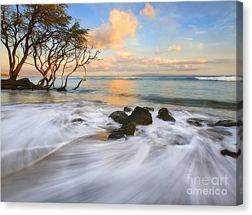 Sunset Tides Canvas Print by Mike  Dawson