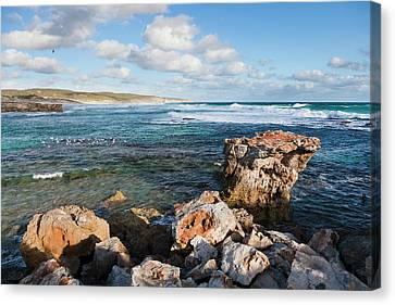 The Coastline At Hanson Bay On Kangaroo Canvas Print by Martin Zwick