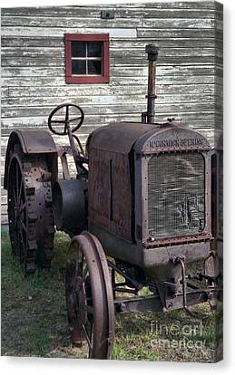 The Old Mule  Canvas Print by Richard Rizzo