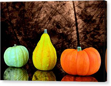 Three Small Pumpkins  Canvas Print by Toppart Sweden
