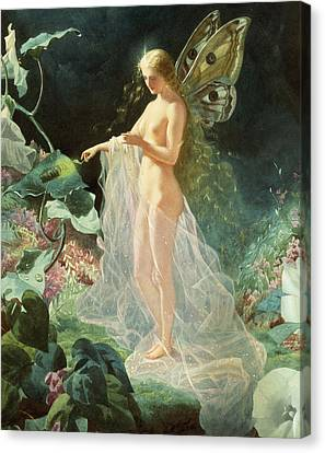 Titania Canvas Print by John Simmons