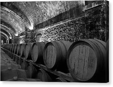 Tuscan Wine Cellar  Canvas Print by Mountain Dreams