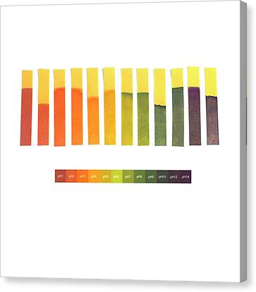 Universal Indicator Paper Canvas Print by Science Photo Library