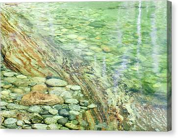 Usa, California, Sequoia National Park Canvas Print by Jaynes Gallery