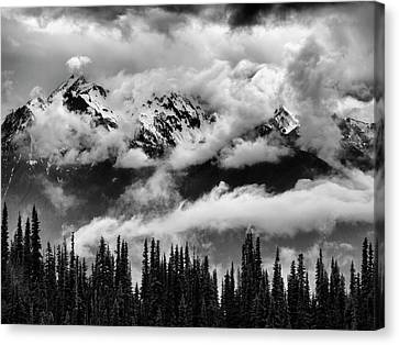 Usa, Washington State, Olympic National Canvas Print by Ann Collins
