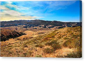 Vast View Canvas Print by Robert Bales