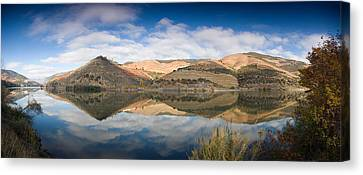 Vineyards At The Riverside, Cima Corgo Canvas Print by Panoramic Images