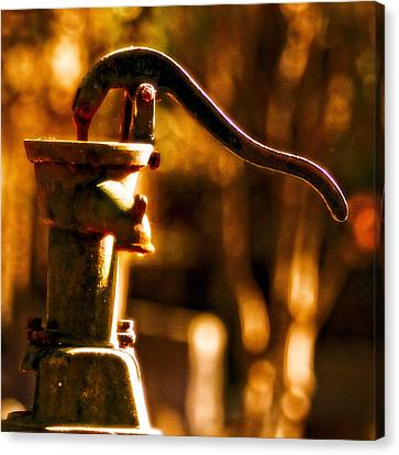 Vintage Water Pump Canvas Print by Jim Finch