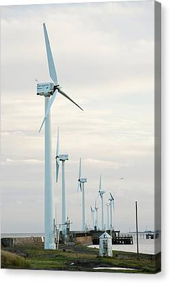 Wind Turbines Canvas Print by Ashley Cooper