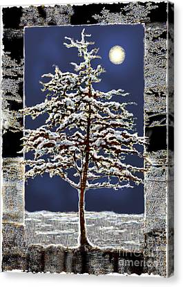 Winter Moon Canvas Print by Ursula Freer