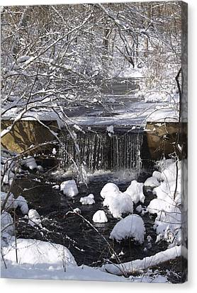 Winter Waterfall Canvas Print by Patricia McKay