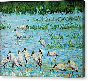 Wood Stork Discussion Group Canvas Print by Dwain Ray