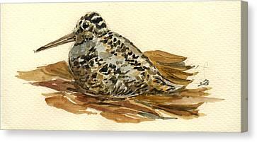 Woodcock Canvas Print by Juan  Bosco