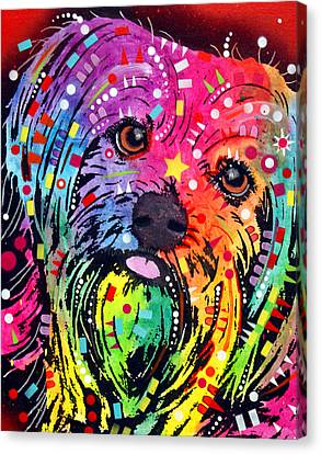 Yorkie Canvas Print by Dean Russo
