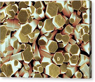 Zinc Oxide Crystals Canvas Print by Science Photo Library