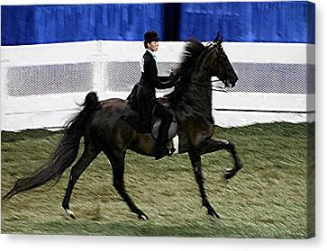 2008-d-world Championship Horse Show - Louisville Ky Canvas Print by Thia Stover