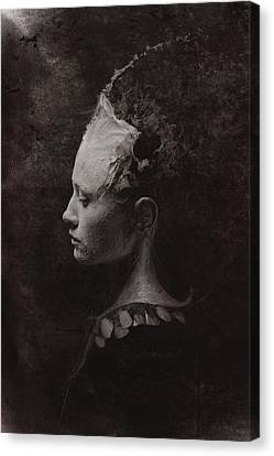 Secret Canvas Print by Victor Slepushkin