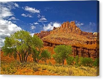 Capitol Reef National  Park Cathedral Valley Canvas Print by Mark Smith