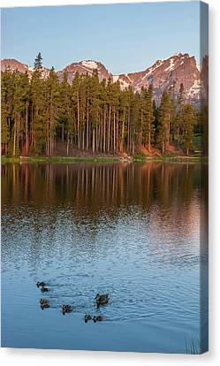 Usa, Colorado, Rocky Mountain National Canvas Print by Jaynes Gallery