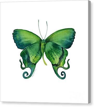 29 Arcas Butterfly Canvas Print by Amy Kirkpatrick