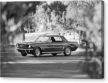 1965 Shelby Prototype Ford Mustang Canvas Print by Jill Reger