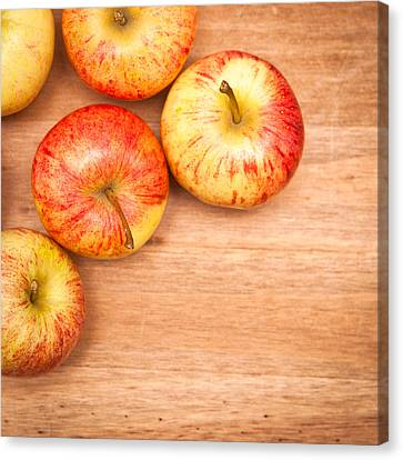 Apples Canvas Print by Tom Gowanlock