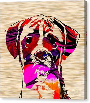 Boxer Canvas Print by Marvin Blaine