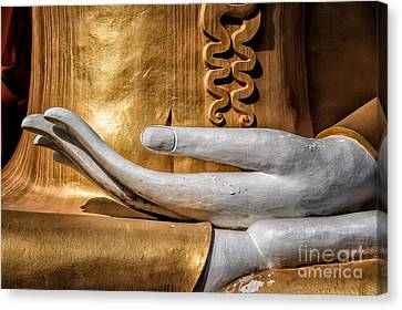Buddha Hand Canvas Print by Adrian Evans