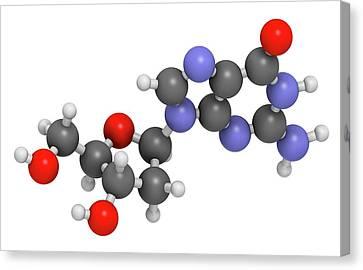 Deoxyguanosine Nucleoside Molecule Canvas Print by Molekuul