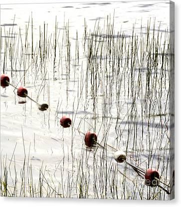 Floats Canvas Print by Bernard Jaubert