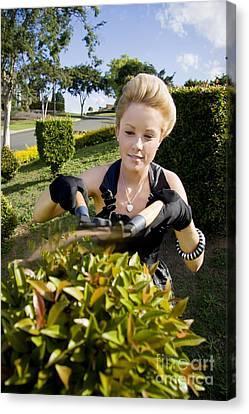 Gardener Canvas Print by Jorgo Photography - Wall Art Gallery