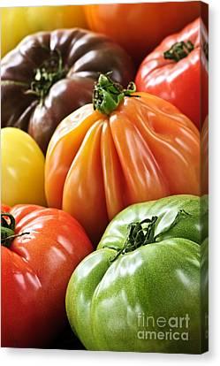 Heirloom Tomatoes Canvas Print by Elena Elisseeva